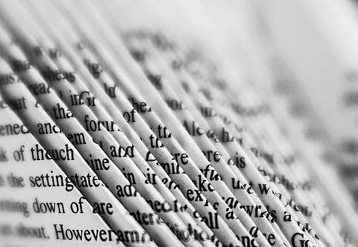 Words and letters by Silvia Marcoschamer