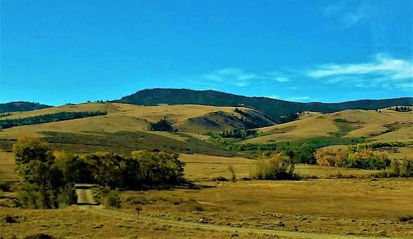 Wyoming near Meadows of Horse Creek by Peggy Leyva Conley
