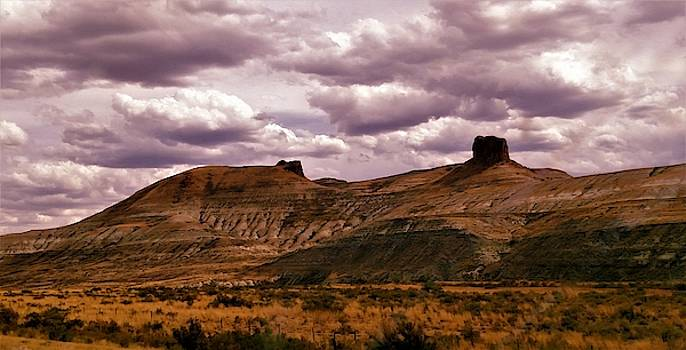 Wyoming Plateau and Terrain by Peggy Leyva Conley