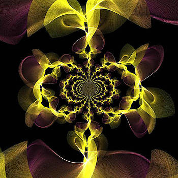 Yellow and Purple crazy fractal by Ronni Dewey