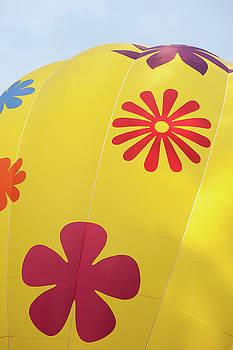 Yellow Balloon Patterns i by Helen Northcott