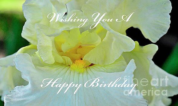 Yellow Bearded Iris Greeting Card by Debby Pueschel