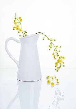 Yellow beautiful flowers on a white vase. by Michalakis Ppalis