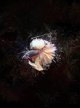 Yellow Copper Rosetail Betta Fish Vertical Portrait by Scott Wallace Digital Designs