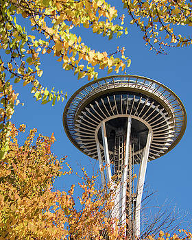 Yellow Leaves And The Space Needle by Matt McDonald