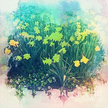 Yellow Tulips - Central Park in Spring by Miriam Danar