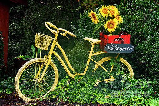 Bob Phillips - Yellow Welcome
