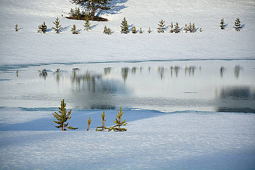 Yellowstone's Divide Lake and Reflections in Deep Winter by Bruce Gourley