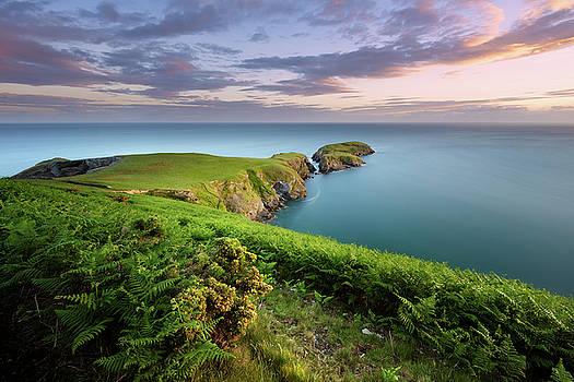 Ynys Lochtyn Summer Sunrise by Elliott Coleman