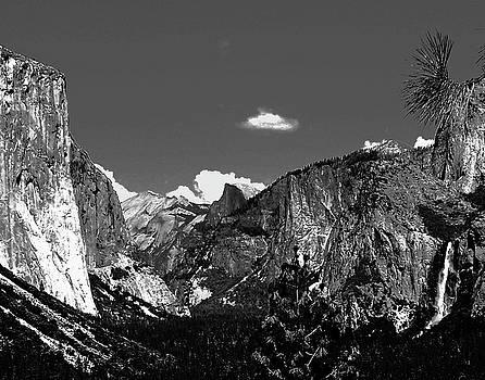 Yosemite by Carl Sheffer