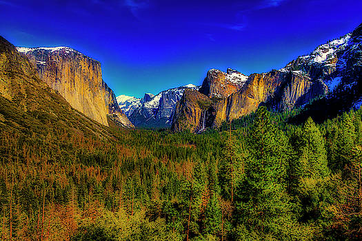 Yosemite Valley View by Garry Gay
