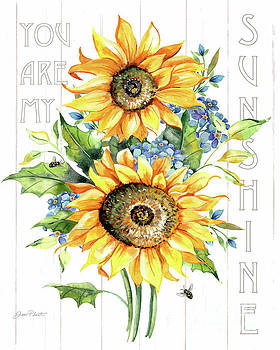 You Are My Sunshine A by Jean Plout
