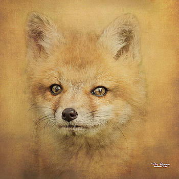 Young Hunter by Peg Runyan