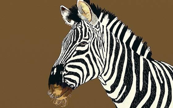 Zebra by Ronni Dewey