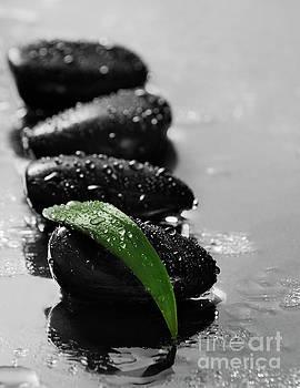 Zen stones by Jelena Jovanovic
