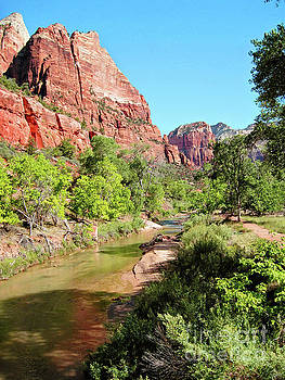 Zion Summer 300 by Sharon Williams Eng