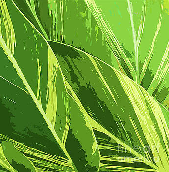 Sharon Williams Eng - Abstract Variegated Ginger Green 300