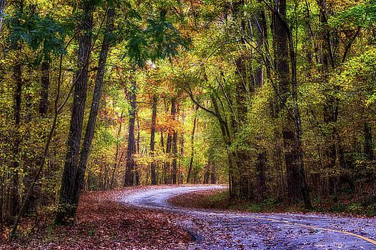 Susan Rissi Tregoning - Autumn Drive