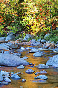 Cliff Wassmann - Autumn Rocks