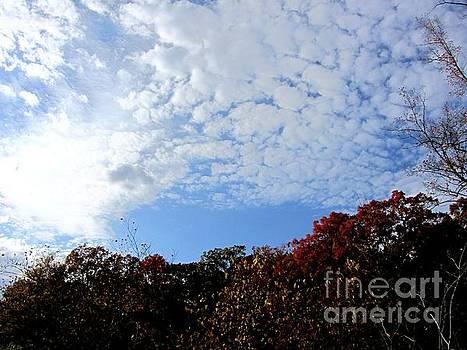 John LaCroix - Autumn Sky