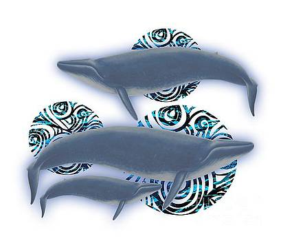 Priscilla Wolfe - Blue Whale Family