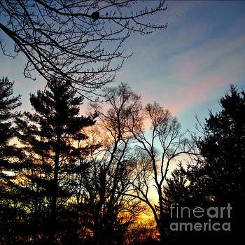 Frank J Casella - Bold Sunrise Pastel Sky -  Square