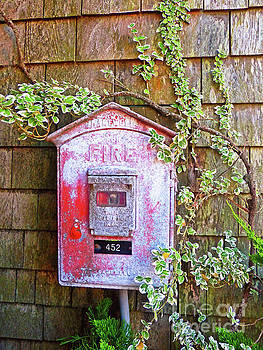 Sharon Williams Eng - Cape Cod Fire Box 300