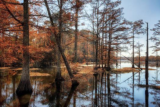 Susan Rissi Tregoning - Cypress Cove Autumn