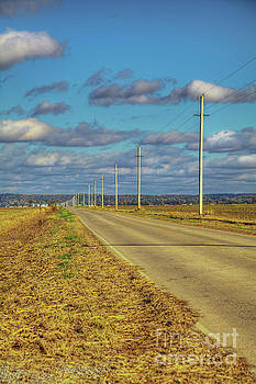 Larry Braun - Electric Poles along a Country Road