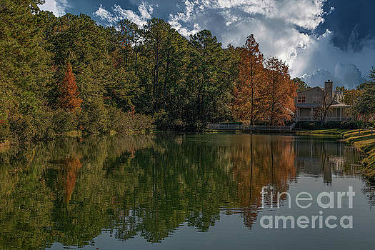 Dale Powell - Fall Pond Reflections - Autumn Hues of Gold