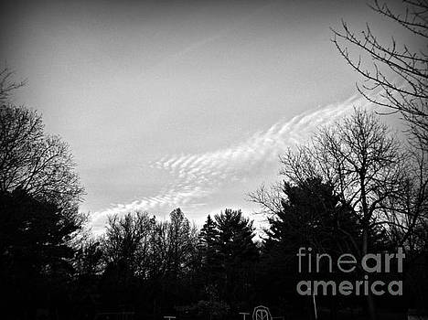 Frank J Casella - Fancy Clouds - Black and White