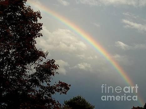 JM - Gray Day Rainbow
