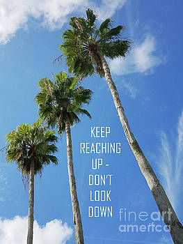 Sharon Williams Eng - Keep Reaching Up Poster 300