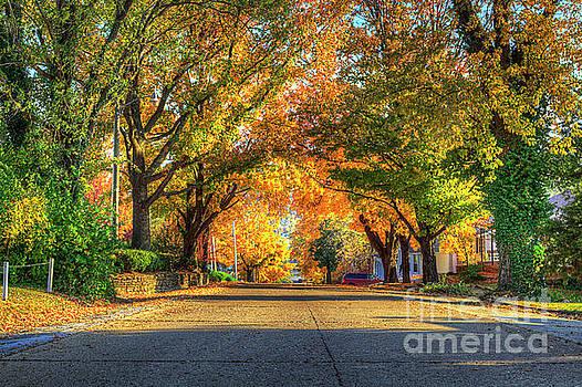 Larry Braun - Main Street in Autumn