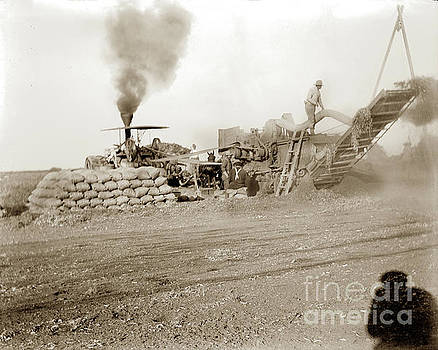 California Views Archives Mr Pat Hathaway Archives - Threshing Machine in Operation, Bagging Grain, California Circa 1910