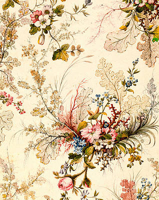 Wild Flower Drawing - Marble end paper by William Kilburn