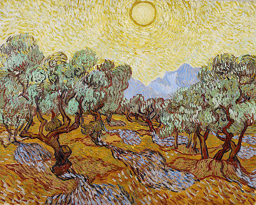 Olive Trees with yellow sky and sun Print by Vincent van Gogh