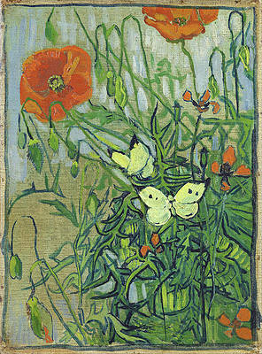 Butterflies and poppies Print by Vincent van Gogh