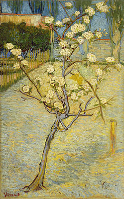 Small pear tree in blossom Print by Vincent van Gogh