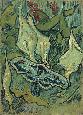 Emperor moth Print by Vincent van Gogh