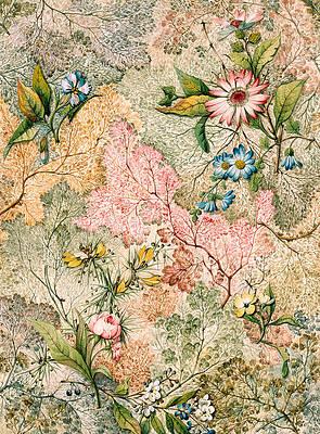 Рисунок дикого цветка - Мраморная торцевая бумага Уильяма Килберна
