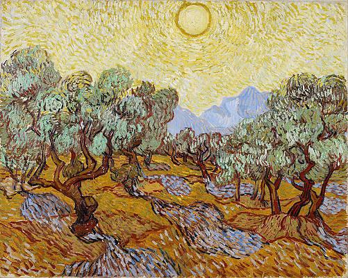 Olive Trees Print by Vincent van Gogh