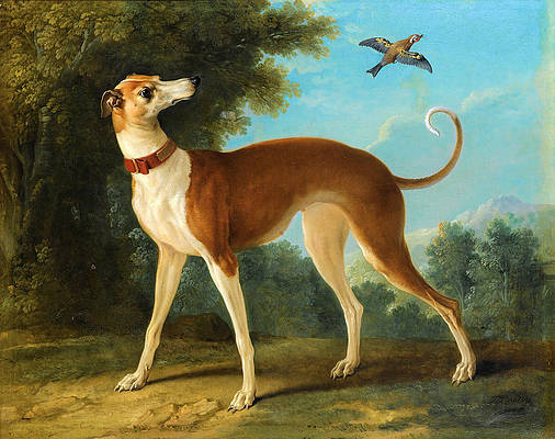 Greyhound in a landscape Print by Jean-Baptiste Oudry