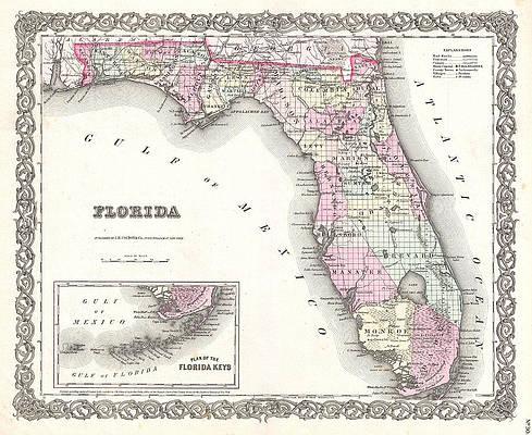 Map of Florida Print by Joseph Hutchins Colton