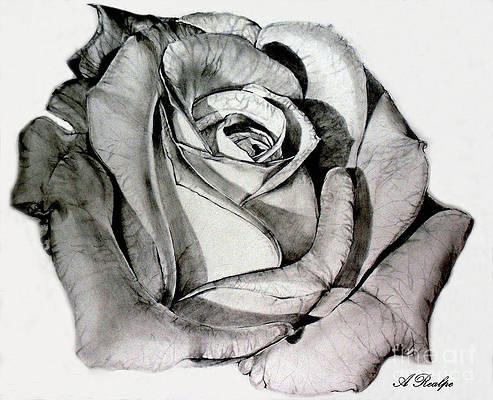 Реалистичный цветочный рисунок - Материнская роза от Andrea Realpe