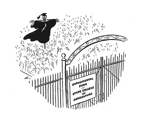 Рисунок выпускной фуражки - New Yorker June 28th, 1941 by Alain