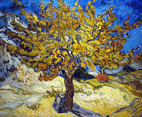 The Mulberry Tree Print by Vincent van Gogh