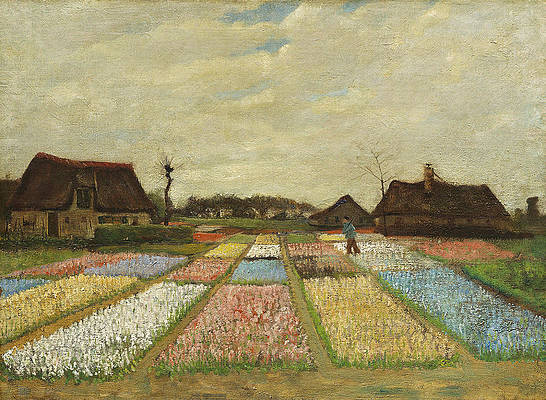 Flower Beds in Holland Print by Vincent van Gogh