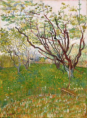 The Flowering Orchard Print by Vincent van Gogh