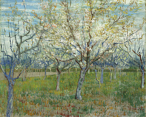 The pink orchard Print by Vincent van Gogh